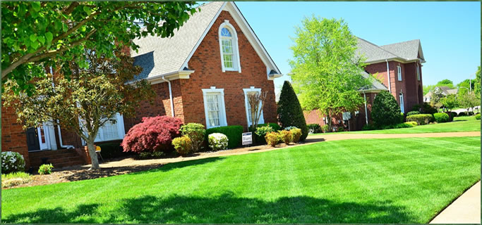 A beautiful green lawn achieved with lawn care services from Peerless Turfcare