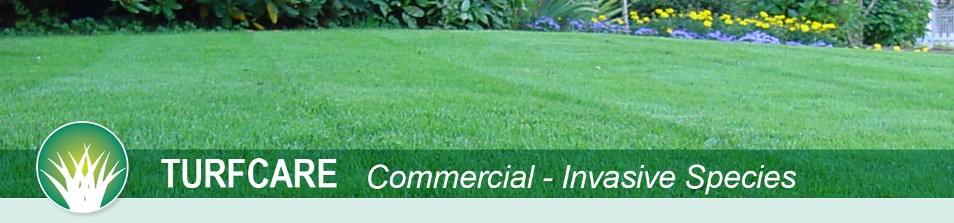 Peerless Turfcare - Commercial-Invasive Species