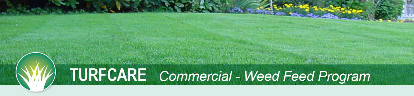 turfcare commercial weed feed program