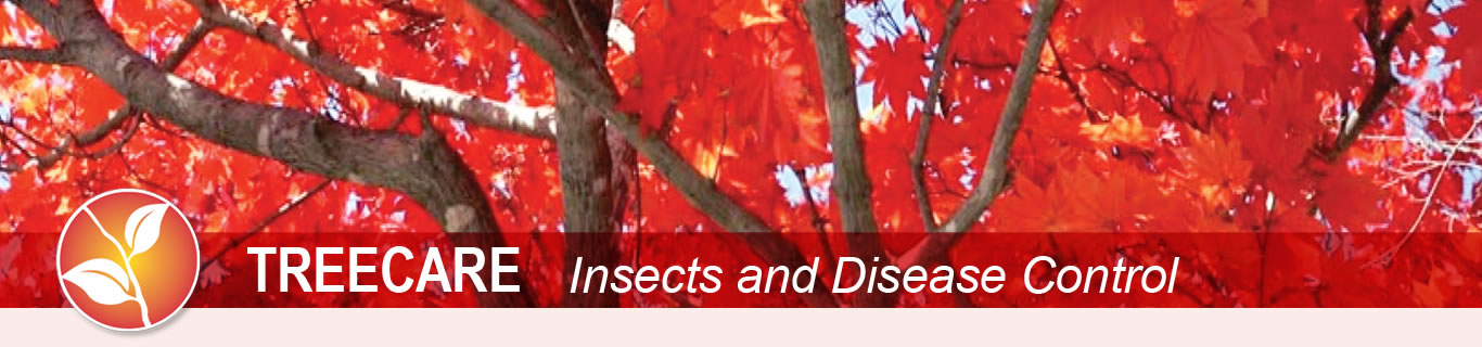 Tree Care Insects and Disease Control banner