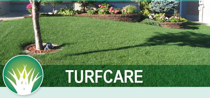 main page turfcare image2